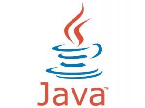 Detectado error grave en Java
